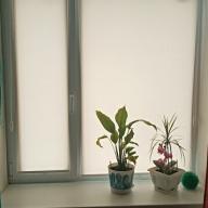 Рулонная штора на окно мини Эко - Рулонная штора мини на пластиковое окно ЕСО  кремовый