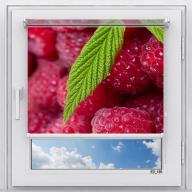 Рулонная штора с фотопечатью Фрукты - Малина