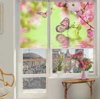 Рулонные шторы на раму окна с фотопечатью  Бабочки
